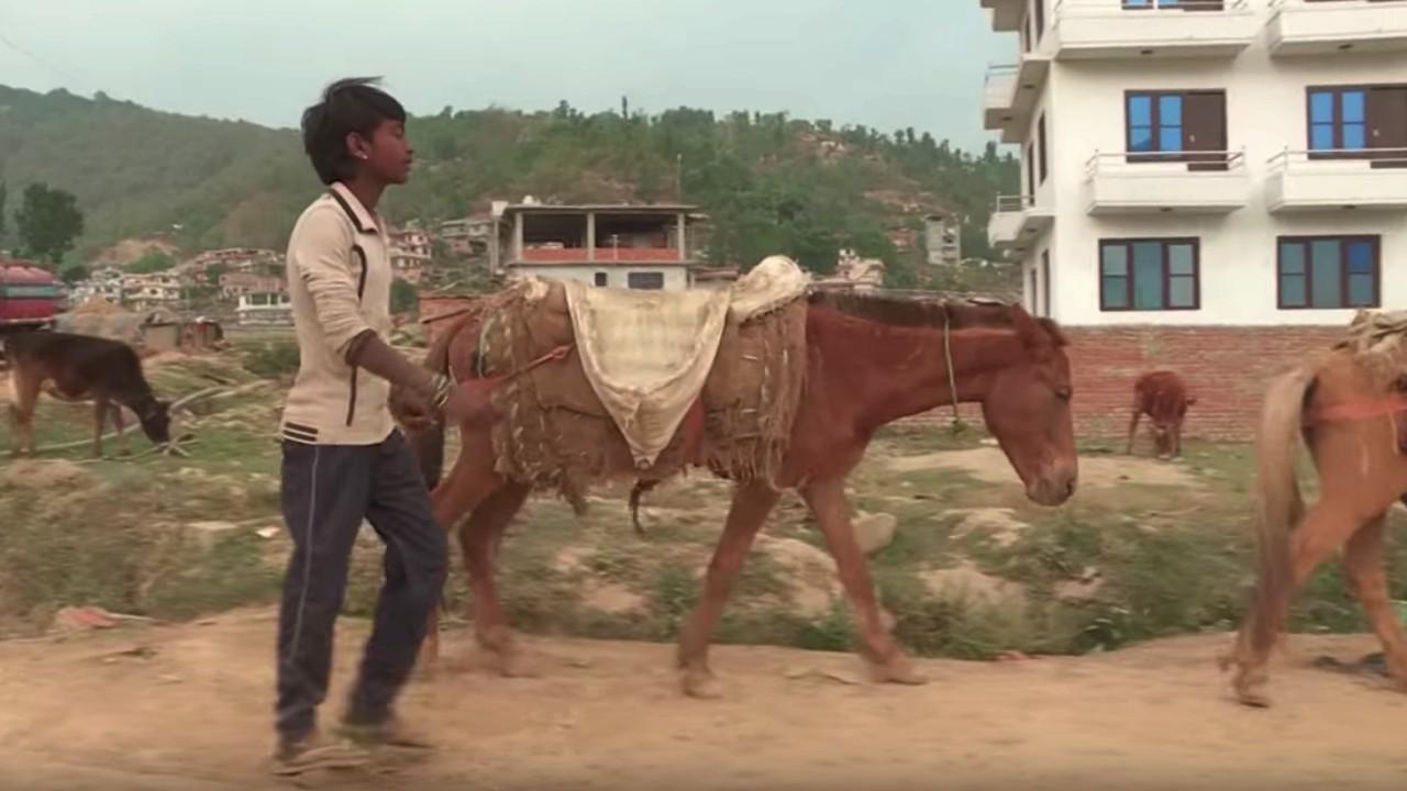 nepal child labor3